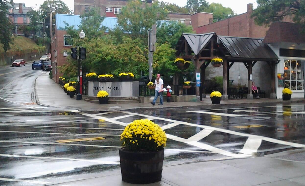 Pliny Park, Downtown Brattleboro